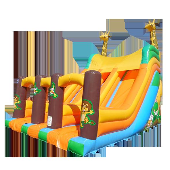p15642-giraffe-double-slide-aq4736